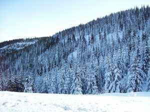 iarna la Voineasa