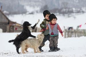Sursă foto: http://www.liviumihai.ro/