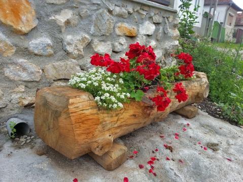 flori la sat
